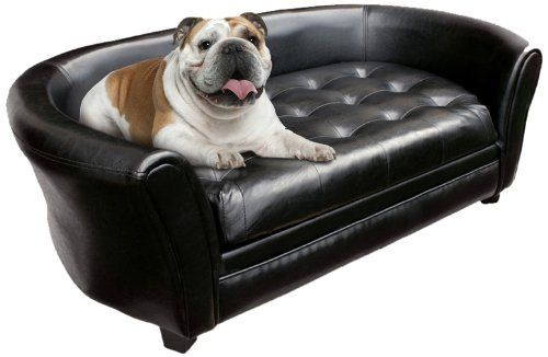 A complete guide to luxury dog sofa – Please make the right choice